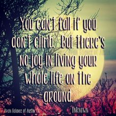 You can't fall if you don't #climb. But there's no #joy in living your whole life on the #ground. –Unknown #fly #borntofly #quote #quoteoftheday #wordsofwisdom #instaquote #motivation #Motivationmonday #inspirational #Austin #ATX #Texas #TX #addressthecause #brainbalance #afterschoolprogram