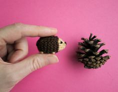 A tiny hedgehog will help you find small treasures.