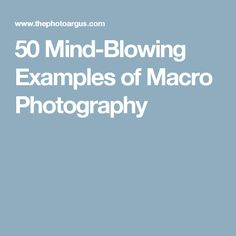 50 Mind-Blowing Examples of Macro Photography