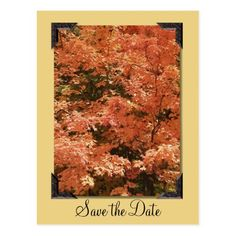 Fall Orange Leaves Wedding Save the Date Postcard