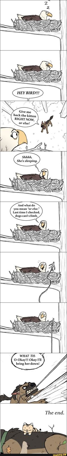 Found on iFunny Funny Animal Comics, Animal Jokes, Cute Comics, Funny Comics, Funny Animals, Cute Animals, Cartoon Jokes, Funny Cartoons, Cute Cartoon