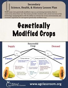 GMOs are an important topic in food consumption and agriculture today. This lesson equips students with the critical thinking skills to understand the social, environmental, and economic arguments for and against genetic modification. Ag Science, Plant Science, Science Classroom, Science Lessons, Life Science, Computer Science, Forensic Science, Classroom Ideas, Environmental Education