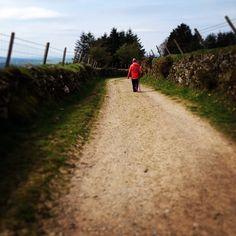 Walking with the mother! Mother Dearest, Mountain S, Ireland, Walking, Country Roads, Instagram Posts, Walks, Irish