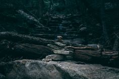 rocks nature walking trail stacked rocks trees forest woods stones outdoors camping trekking