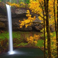 Fall photograph