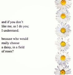 I'm just a single daisy in a field of millions of roses