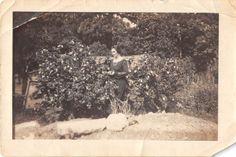 Photograph Snapshot Vintage Black and White: Woman Flower Garden Bushes 1930's