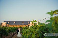 Winery Weddings near Dallas Texas | Dallas Wedding Photographer at Delaney Vineyards in Grapevine Texas