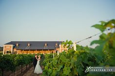 Winery Weddings near Dallas Texas | Dallas Wedding Photographer at Delaney Vineyards in Grapevine Texas