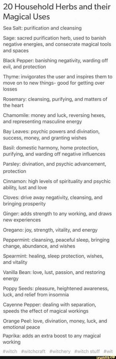 20 household herbs and their magical uses. List of common herbs like rosemary, b. 20 household her Wiccan Spells, Magick, Magic Spells, Hoodoo Spells, Luck Spells, Wiccan Altar, Tarot, Under Your Spell, Kitchen Witchery