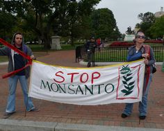Monsanto: Stop buying legislation (and politicians) SIGN PETITION - DEADLINE DECEMBER 15, 2013