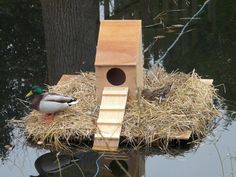 PVC pipes for the floating duck house   Floating duck house    PVC pipes for the floating duck house   Floating duck house   Pinterest   Duck House  Pvc Pipes and Pipes