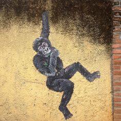 #gorilla #tracking #ruanda #art