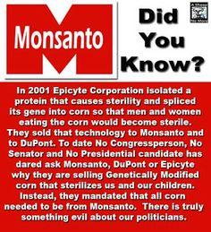The protest against Genetically Modified Organisms (GMO's) and Monsanto! Illuminati, Good To Know, Did You Know, Genetically Modified Food, Religion, Out Of Touch, New World Order, Ms Gs, Things To Know