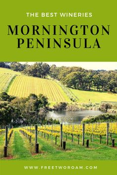 The Best Wineries on the Mornington Peninsula for wining and dining - Free Two Roam Travel Guides, Travel Tips, Budget Travel, Travel Articles, Travel Info, New Zealand Travel, Group Tours, Great Barrier Reef, South Pacific