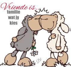 Ek's regtig bevoorreg om jou in my lewe te hê Shaun The Sheep, Sheep And Lamb, Nici Teddy, Tatty Teddy, Funny Sheep, Afrikaanse Quotes, Cute Teddy Bears, Love My Husband, Animal Cards