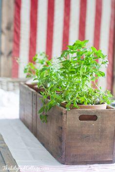 Herb garden box by T