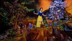New Look at Scene from Snow White's Enchanted Wish at Disneyland Disney Shares, Seven Dwarfs Mine Train, Disney Princess Characters, Disney Now, Walt Disney Imagineering, Disney Parks Blog, Splash Mountain, Sleeping Beauty Castle, Disney World Magic Kingdom