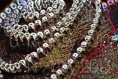 Zipper Flower 3  8x12 Print by URArtsy on Etsy, $10.00