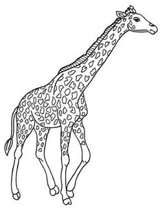Giraffe outline for coloring pages ~ SIMPLE GIRAFFE OUTLINE | you to paint a picture giraffe ...