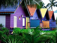 Tropical color beach huts in the Bahamas. Home Wallpaper, Nature Wallpaper, Case Creole, Places Around The World, Around The Worlds, Bahamas House, Bahamas Beach, Bahamas Vacation, Caribbean Homes