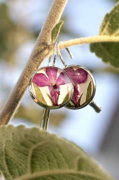 Earrings with real flowers