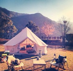 Love the tent. Camping Glamping, Luxury Camping, Camping Hacks, Outdoor Camping, Tent Camping Checklist, Weekend Camping Trip, Road Trip, Meadow Garden, Cottage In The Woods