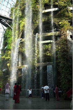 Waterfall in the Cloud Forest conservatorium | Gardens by the Bay, Singapore