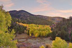 Bonanza, Villa Grove, Colorado