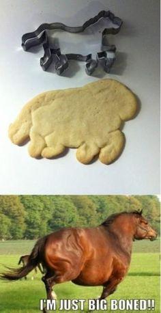 galleta lol Animal Jokes, Funny Animal Memes, Funny Animals, Cute Animals, Sock Animals, Really Funny Memes, Stupid Funny Memes, Funny Relatable Memes, Funny Humor