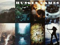 Collages Number 11: Hunger Games