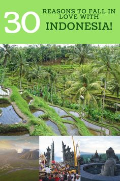 30 Reasons You Should Be Desperate To Travel to Indonesia! -indonesia travel beautiful places trips -bali travel guide things to do  -indonesia culture java photography  ☆☆ Travel Guide / Bucket List Ideas Before I Die By #Inspiredbymaps ☆☆