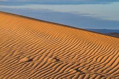 Sahara Desert - Ripples In The Dune by Lindley Johnson