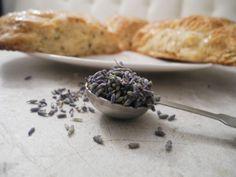 Honey Lavender Scones