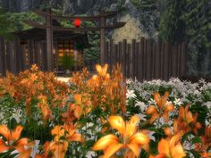 Annapurna, Second Life