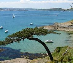 Falmouth, Cornwall - lived here for 4 years! Student days.