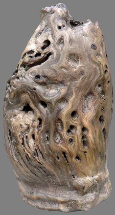 Le blog de boisflottesdeloire - Sculptures naturelles - Oxygène. Yann Viau. Bois flotté, driftwood, schwemmholz, cire, wax, Loire, rivière,