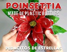 Art Plastic, Plastic Bottle Art, Plastic Bottle Flowers, Recycle Plastic Bottles, Christmas Goodies, Christmas Crafts, Christmas Ornaments, Recycled Art, Flower Tutorial