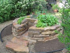 keyhole gardens hold moisture and nutrients due to an active compost pile in the center (lots of great photos!)