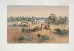 Burke and Wills Expedition / Samuel Thomas Gill. 6. Arrival at Carpentaria
