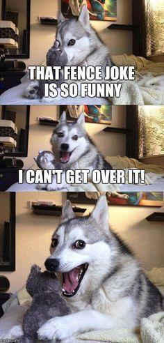 Bad Pun Dog #DogHumor