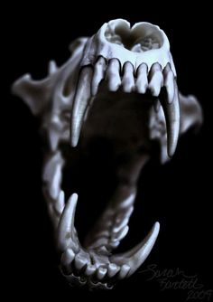 Coyote Skull in Blue by NaturePunk on DeviantArt
