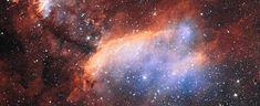 Cocinando estrellas jóvenes en la Nebulosa de la Gamba