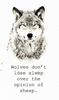 To tell you something about wolves.