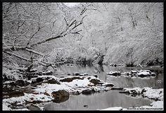 Austin Acker Photography