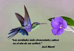 """Caminos del viento: """"Verdades elementales"""". José Martí."""