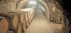 Un paseo por la Historia del vino a la luz de la velas | Hit Cooking