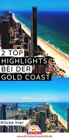 Über den Link gelangst du zu 2 Top Highlights an der Gold Coast. Brisbane, Sydney, Highlights, Surfer, Roadtrip, Gold Coast, Paradise, Australia, Link