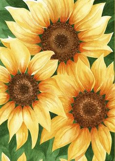 Trinity of Sunflowers Greeting Card for Sale by Greg Dolan Sunflower Canvas Paintings, Cute Canvas Paintings, Acrylic Painting Canvas, Canvas Art, Paintings Of Sunflowers, How To Draw Sunflowers, Acrylic Painting Flowers, Sunflower Drawing, Sunflower Art