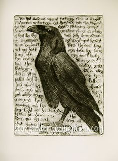 As a tribute to The Raven and Edgar Allan Poe, here is some fan art that can serve as a visual element while reading the poem: Pet Raven, Raven Art, Edgar Allan Poe, Crow Art, Bird Art, Drypoint Etching, Crows Ravens, Arte Horror, Bird Drawings